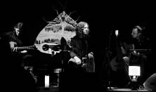 Hard Times (folk, blues) - koncert