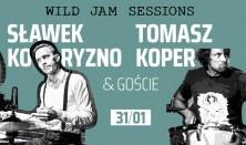 BOTO Wild Jam: Sławek Koryzno / Tomasz Koper i goście